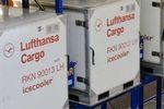 Lufthansa Cargo Cool Center in Frankfurt wird ausgebaut