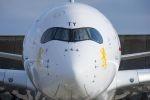 Ethiopian nimmt die afrikanische Luftfahrt an die Hand