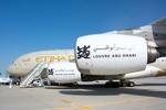 Etihad Airways muss neue Schock-Zahlen verkraften