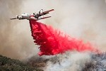 Hercules-Löschflugzeug abgestürzt – Flughafen Canberra schließt