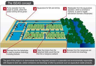 Biofuel Concept ISEAS
