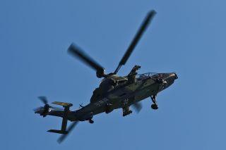 Tiger bei der Bundeswehr