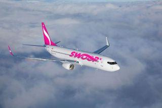 Der kanadische Billigflieger Swoop will im Juni 2018 an den Start gehen