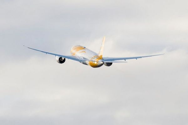 Scoot Boeing 787-8
